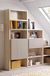 Bookcase Furniture